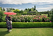 A VISITOR ADMIRES THE ROSES IN THE MODERN  ROSE GARDEN AT RHS GARDEN HYDE HALL,  IN JUNE