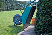 PLASTIC WHEELBARROW TIPPED OVER AND RESTING AGAINST A YEW HEDGE