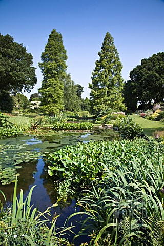 THE_WATER_GARDENS_AT_BETH_CHATTO_GARDENS