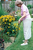 LADY TRIMMING LAWN EDGE WITH LONG HANDLED FLAT EDGING SHEARS.MODEL RELEASED