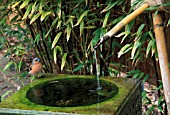SMALL JAPANESE WATER FEATURE BAMBOO BIRD