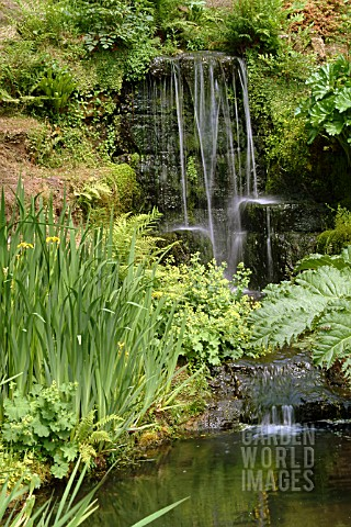 WATERFALL_WAKEHURST_PLACE__WEST_SUSSEX