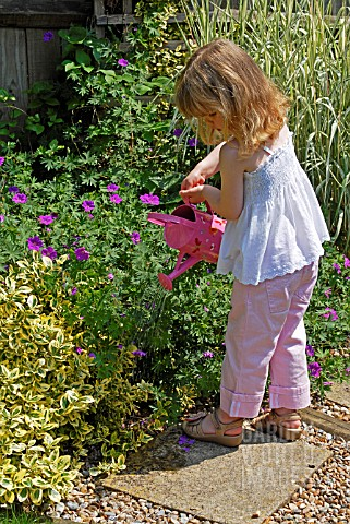 CHILD_WATERING_PLANTS_WITH_A_WATERING_CAN__SURREY_LATE_JUNE