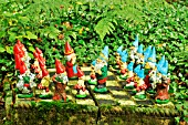 GNOMES AT THE GNOME RESERVE