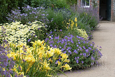 BLUE__YELLOW_HERBACEOUS_BORDER