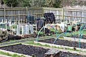 ALLOTMENT GROWING METHODS