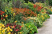 HERBACEOUS BORDER, HOT COLOURS, WEST DEAN GARDENS, JULY