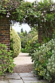 ARCHWAY TO GRAVEL BEDS WITH CLIPPED BOX & EUPHORBIA