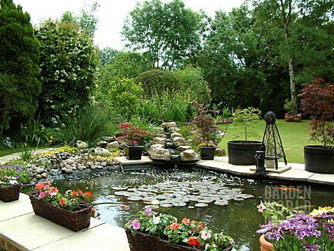 KOI_POND_WITH_CONTAINERS__WATERFALL