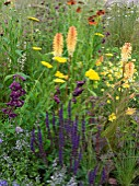 MIXED PLANTING IN JORDANS WILDLIFE GARDEN DESIGNED BY SELINA BOTHAM.