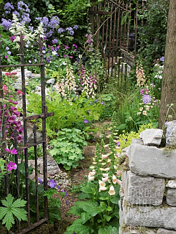 THE_FORGOTTEN_FOLLY_GARDEN_DESIGNED_BY_LYNN_RICHES__MARK_LIPPIATT