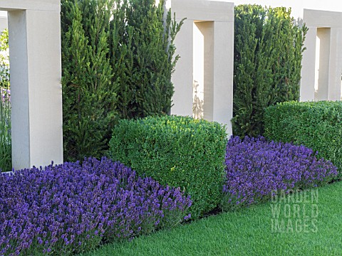 TOPIARY_WITH_SQUARES_AND_CUBES_ON_THE_JUST_RETIREMENT_GARDEN_DESIGNED_BY_JACK_DUNCKLEY