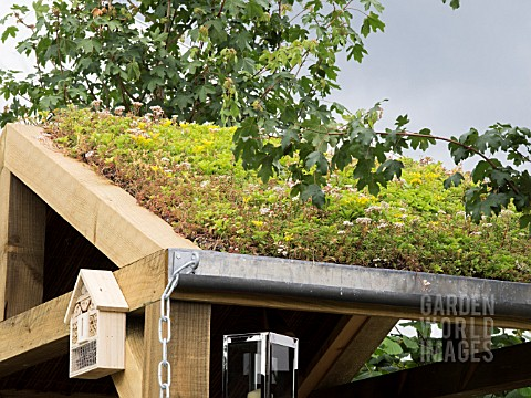 GREEN_SEDUM_ROOF_WITH_AN_INSECT_HOTEL_ON_THE_VISIBLE_GARDEN_DESIGNED_BY_STEPHEN_HALL_DESIGNS_LTD